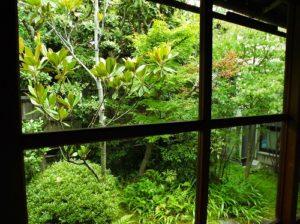 廊下から中庭を見る